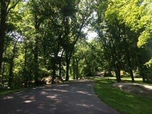 Jardim Botânico do Bronx, NYC.