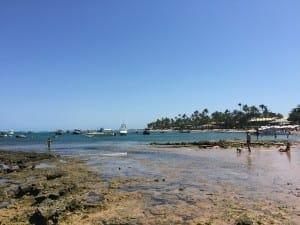 Piscinas naturales de Praia do Forte.