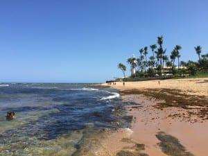 Praia do Forte, Bahia.