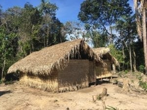 Indigenous tribe Tour in Manaus