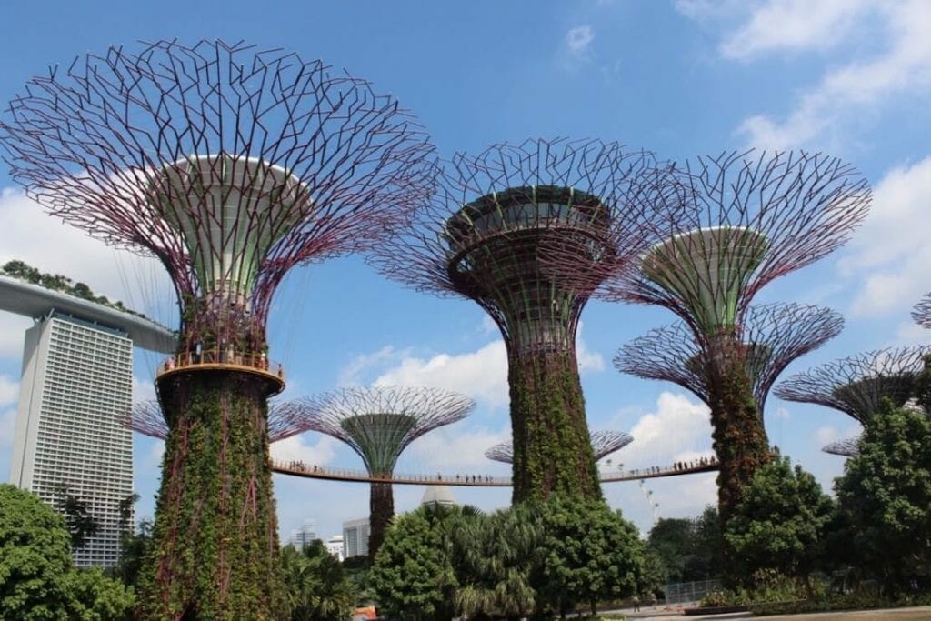 The Surreal Gardens by the Bay, Singapore