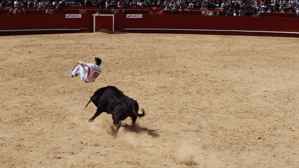 If the bulls aren't injured is it acceptable to watch a bullfight?