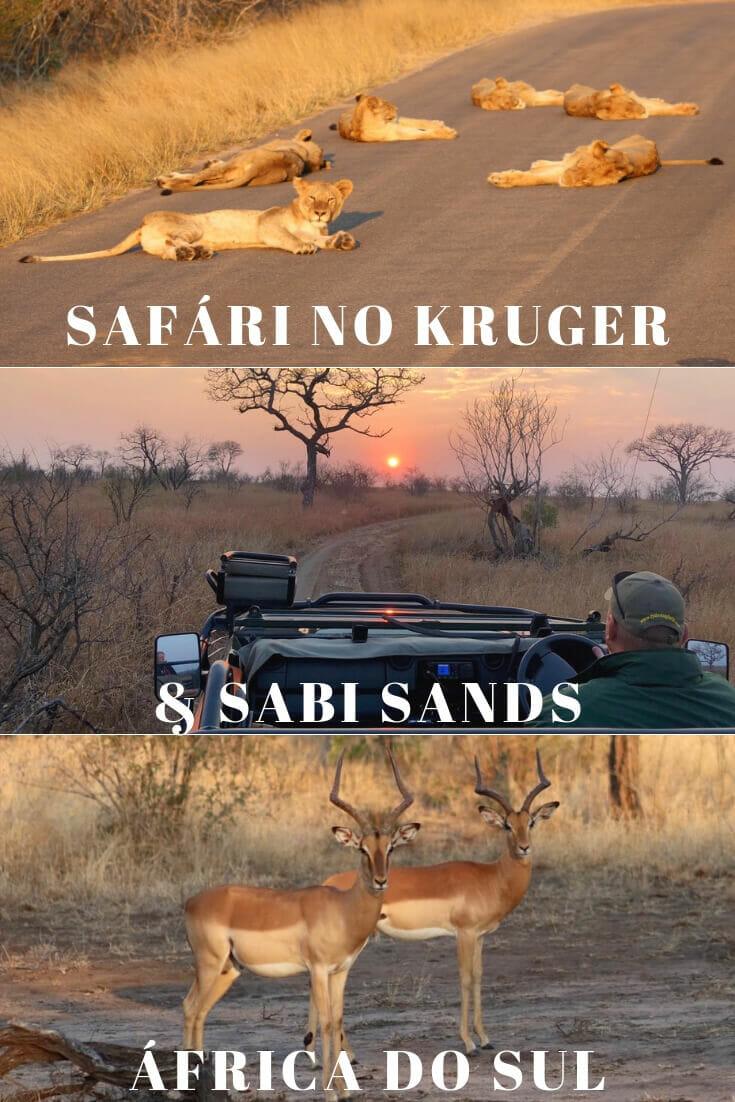 como-fazer-safari-no-parque-kruger