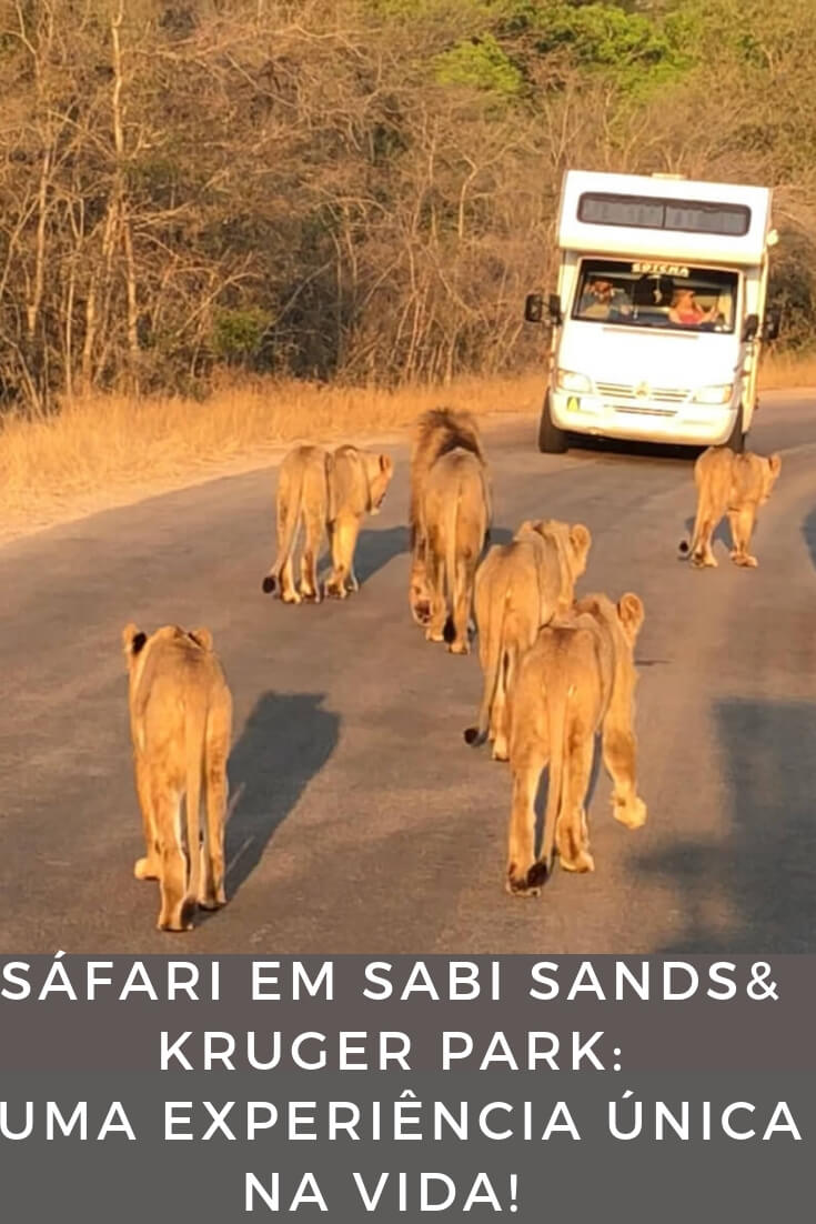 safari-no-parque-nacional-kruger