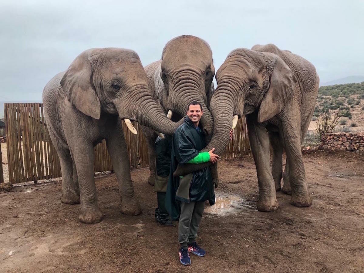 The elephant encounter and interaction at Buffelsdrift Loft was one of my favorite Garden Route highlights.