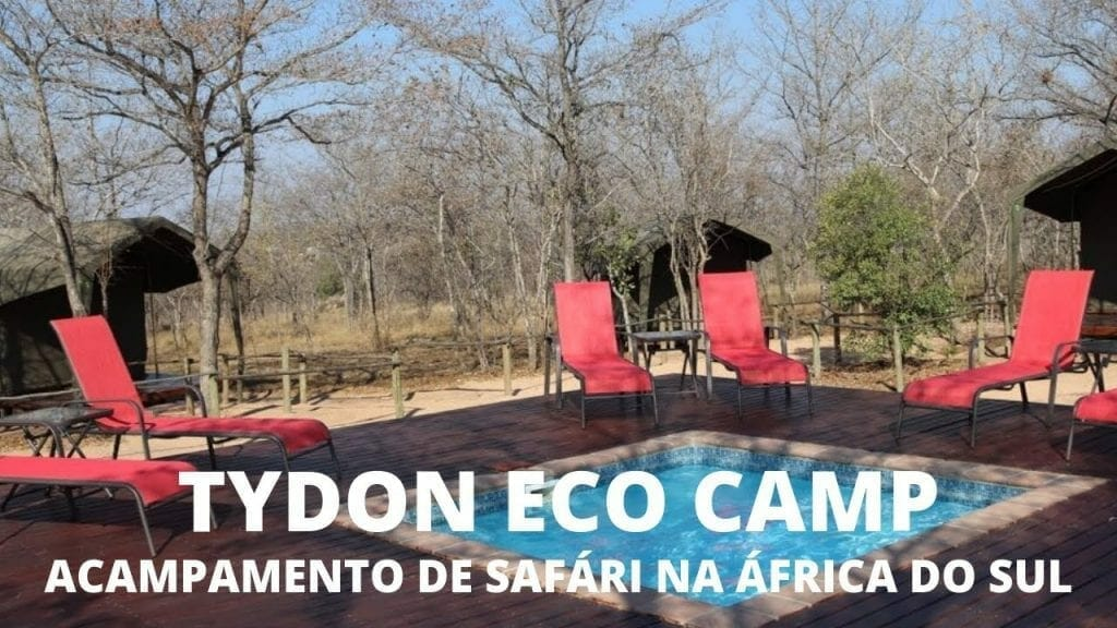 Meu Acampamento de Sáfari na África do Sul – Vídeo