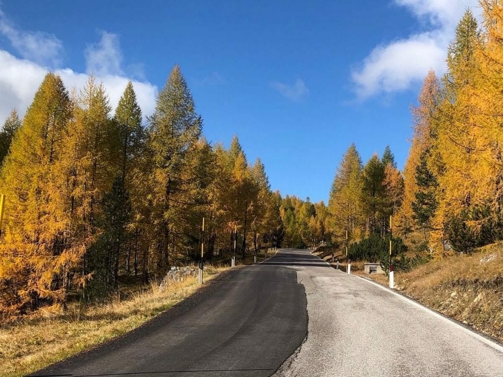 Scenic road during autumn.