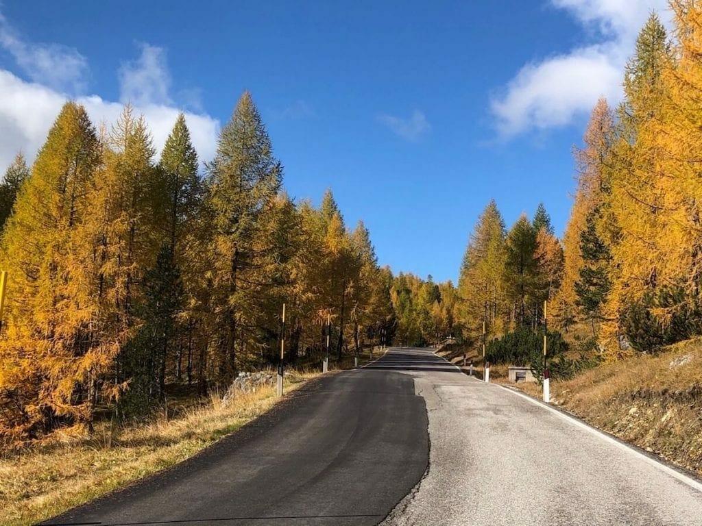 Carretera escénica en otoño