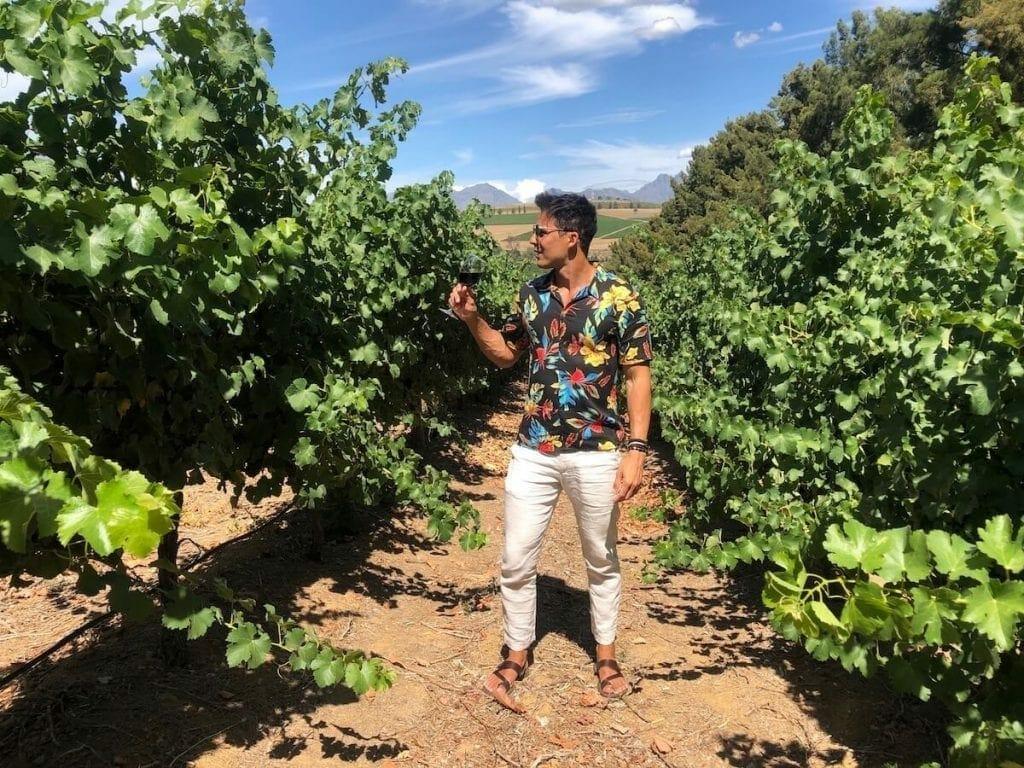 Fazer um passeio para as vinícolas de Stellenbosch tem que estar na sua lista quando visitar a África do Sul.