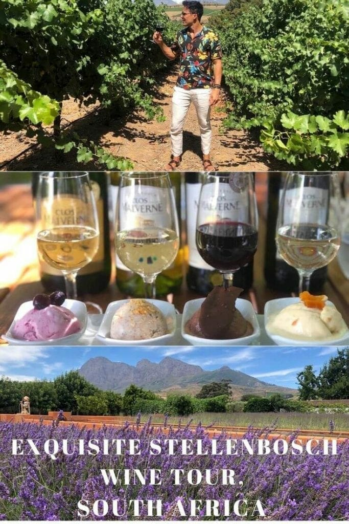 cape-town-wine-tours