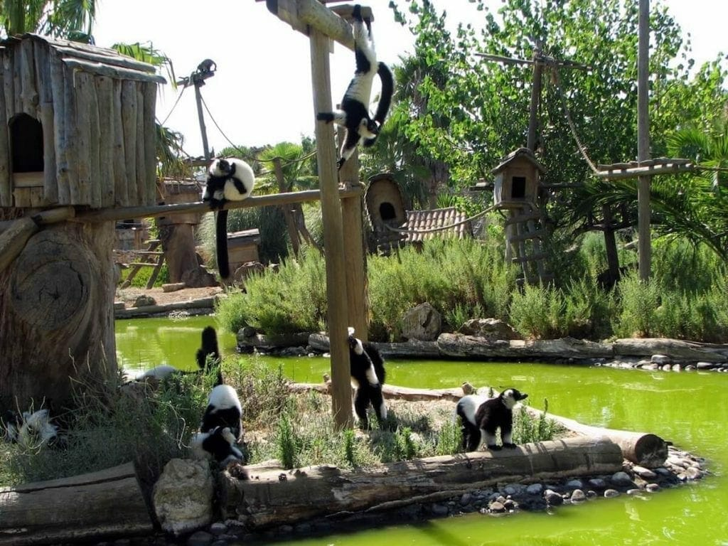 Lagos Zoologico